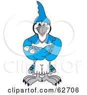 Blue Jay Character School Mascot With His Arms Crossed