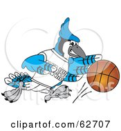Royalty Free RF Clipart Illustration Of A Blue Jay Character School Mascot Playing Basketball
