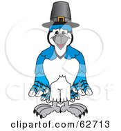 Blue Jay Character School Mascot Wearing A Pilgrim Hat
