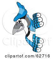 Royalty Free RF Clipart Illustration Of A Blue Jay Character School Mascot Looking Around A Sign by Toons4Biz