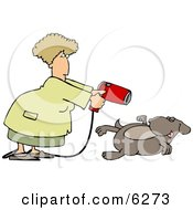 Female Groomer Blow Drying A Dog Clipart Picture