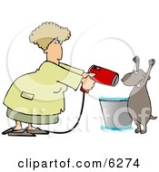 Dog Being Dried By A Female Dog Groomer Clipart Picture