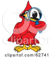 Royalty Free RF Clipart Illustration Of A Red Cardinal Character School Mascot Using A Magnifying Glass