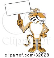 Royalty Free RF Clipart Illustration Of A Tiger Character School Mascot With A Blank Sign by Toons4Biz