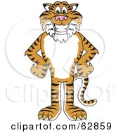 Tiger Character School Mascot With His Hands On His Hips