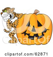 Royalty Free RF Clipart Illustration Of A Cheetah Jaguar Or Leopard Character School Mascot With A Halloween Pumpkin