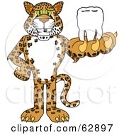 Royalty Free RF Clipart Illustration Of A Cheetah Jaguar Or Leopard Character School Mascot Holding A Tooth by Toons4Biz