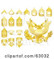 Digital Collage Of Gold Military American Army Enlisted Rank Insignia Icons