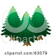 Royalty Free RF Clipart Illustration Of Three Lush Green Evergreen Trees by Rosie Piter