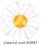 Royalty Free RF Clipart Illustration Of A Round White Daisy Flower With A Yellow Center