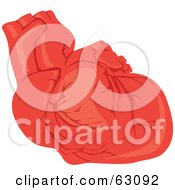 Royalty Free RF Clipart Illustration Of A Human Heart With Veins by Rosie Piter