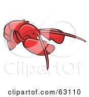 Royalty Free RF Clipart Illustration Of An Animal Factor Red Lobster
