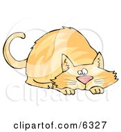 Orange Cat Crouching While Preparing To Pounce On Something Clipart Picture