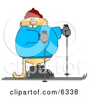 Human Like Cat Cross Country Skiing Clipart Picture