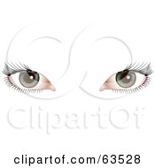 Royalty Free RF Clipart Illustration Of A Womans Green Eyes With Long Black Lashes