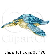 Swimming Turquoise And Yellow Sea Turtle
