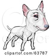 Royalty Free RF Clipart Illustration Of A Friendly White Bull Terrier Dog by Tonis Pan