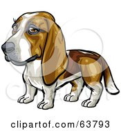 Royalty Free RF Clipart Illustration Of A Friendly Basset Hound Dog by Tonis Pan