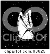 White Flying Butterfly Over Sparkly Blacka