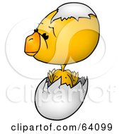 Royalty Free RF Clipart Illustration Of A Yellow Baby Chick Hatching From An Egg With A Shell On His Head