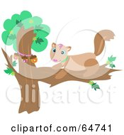 Royalty Free RF Clipart Illustration Of A Happy Squirrel With Acorns In A Tree by bpearth