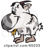 Royalty Free RF Clipart Illustration Of A Shaggy White Goat Facing Left by Dennis Holmes Designs