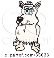 Royalty Free RF Clipart Illustration Of A White Alpaca Facing Front by Dennis Holmes Designs