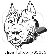 Royalty Free RF Clipart Illustration Of A Black And White Pit Bull Dog Face