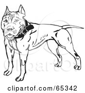 Royalty Free RF Clipart Illustration Of A Friendly Black And White Pit Bull Terrier