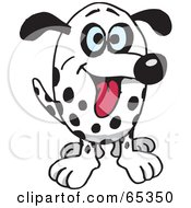 Royalty Free RF Clipart Illustration Of A Friendly Dalmatian Dog Facing Front by Dennis Holmes Designs