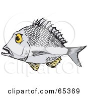 Royalty Free RF Clipart Illustration Of A Profiled Bream Fish by Dennis Holmes Designs
