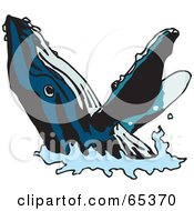 Royalty Free RF Clipart Illustration Of A Blue Whale With Black Stripes Emerging From The Water