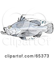 Royalty Free RF Clipart Illustration Of A Fast Barramundi Fish Swimming
