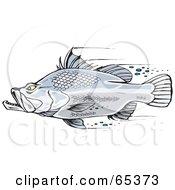 Royalty Free RF Clipart Illustration Of A Fast Barramundi Fish Swimming by Dennis Holmes Designs