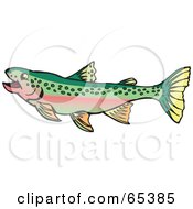 Royalty Free RF Clipart Illustration Of A Swimming Rainbow Trout