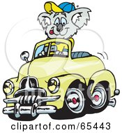 Koala Driving A Yellow Holden FJ