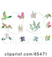 Royalty Free RF Clipart Illustration Of A Digital Collage Of Plants And Birds by Dennis Holmes Designs