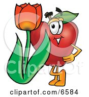 Red Apple Character Mascot With A Red Tulip Flower In The Spring