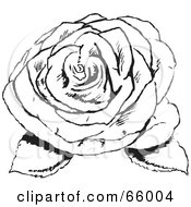 Royalty Free RF Clipart Illustration Of A Black And White Fully Bloomed Rose With Leaves by Prawny