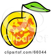 Royalty Free RF Clipart Illustration Of A Sketched Apricot