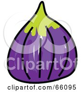 Royalty Free RF Clipart Illustration Of A Sketched Fig