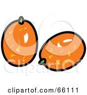 Royalty Free RF Clipart Illustration Of Sketched Kumquats