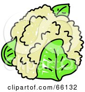 Royalty Free RF Clipart Illustration Of A Head Of Cauliflower And Green Leaves