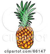 Royalty Free RF Clipart Illustration Of A Sketched Pineapple