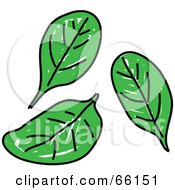 Royalty Free RF Clipart Illustration Of Three Spinach Leaves