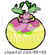 Royalty Free RF Clipart Illustration Of A Sketched Turnip