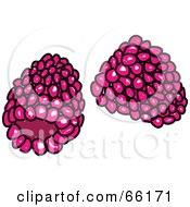 Royalty Free RF Clipart Illustration Of Sketched Raspberries