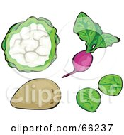 Royalty Free RF Clipart Illustration Of A Digital Collage Of Veggies Cauliflower Radish Potato And Brussels Sprouts by Prawny
