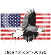 Royalty Free RF Clipart Illustration Of A Majestic Bald Eagle Flying Over An American Flag by Prawny