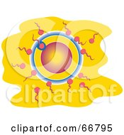Royalty Free RF Clipart Illustration Of Sperm Fertilizing An Egg